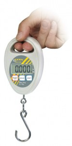 HDB Hold Scale